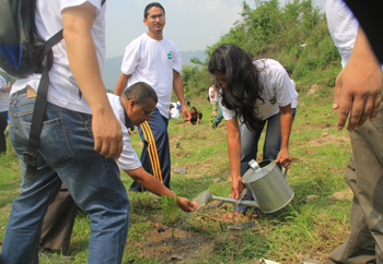 Reforestation Programme